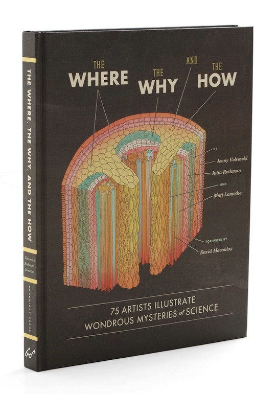 the where the why and the how from chronicle books
