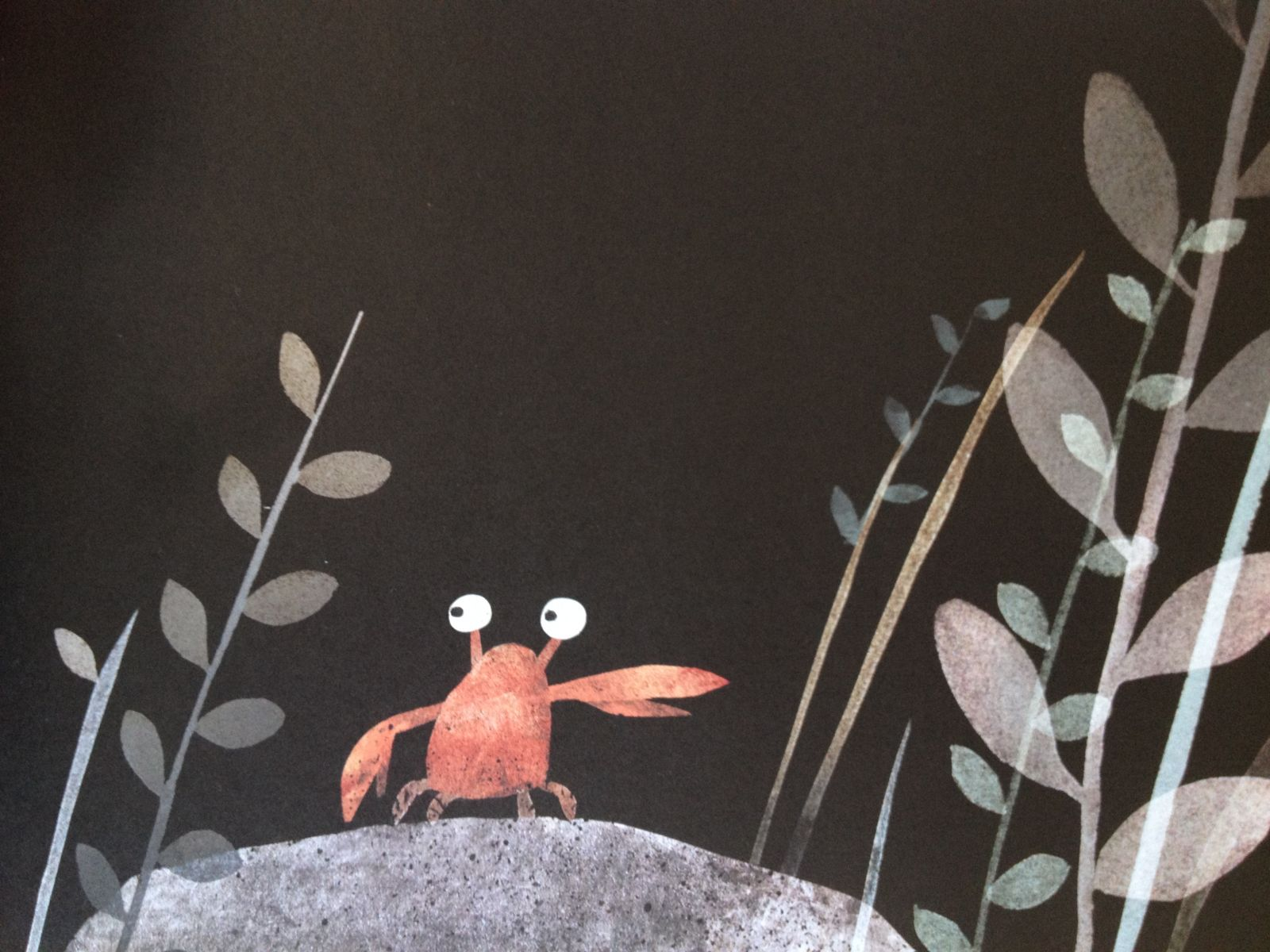 this is not my hat by jon klassen illustration
