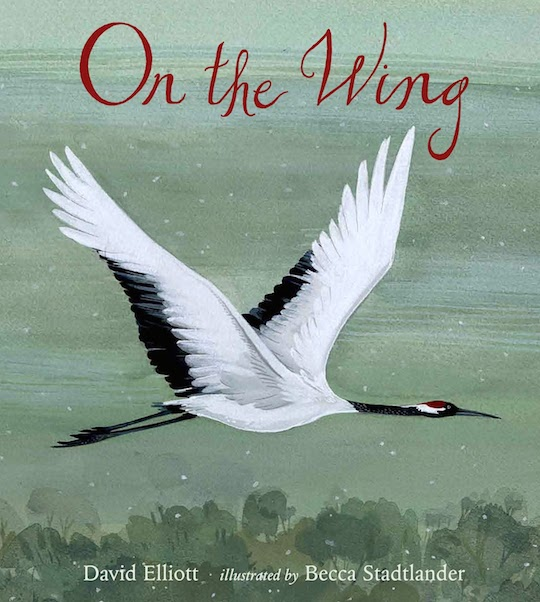 On the Wing, illustrated by @redcapcards artist, Becca Stadtlander